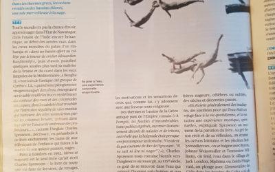 Article Télérama « Héros et nageurs » Editions Nevicata